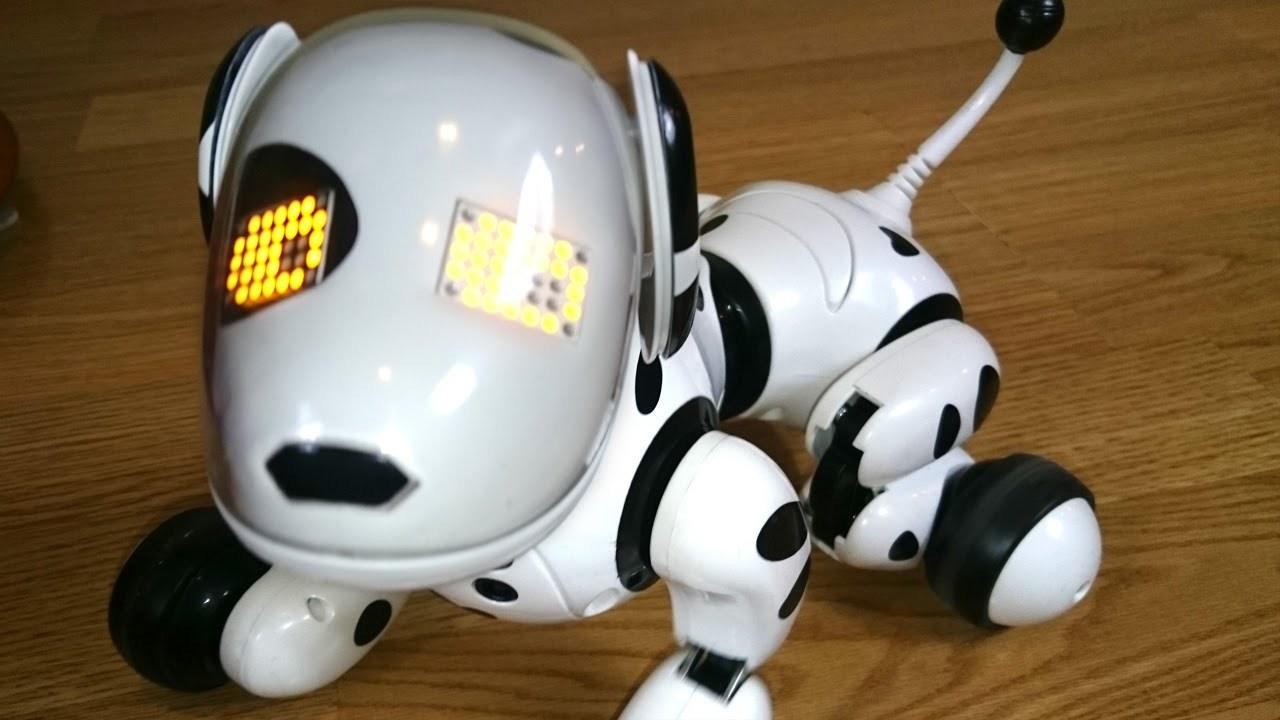Как играть с собакой-роботом?