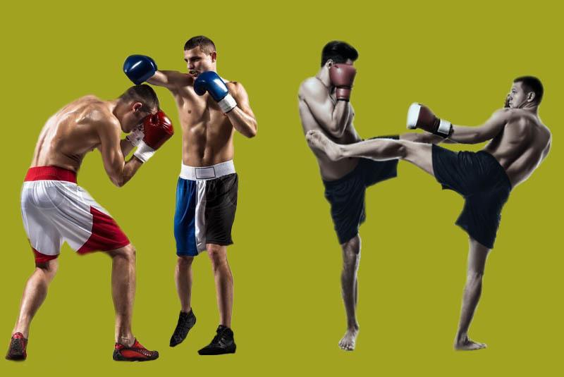 Что лучше Бокс или Кикбоксинг?