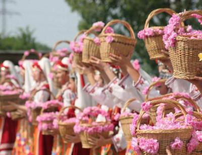 30 мая 18 — Фестиваль розы пройдет 9 июня