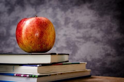 Чем питаться вегетарианцу в школе и университете: 6 советов