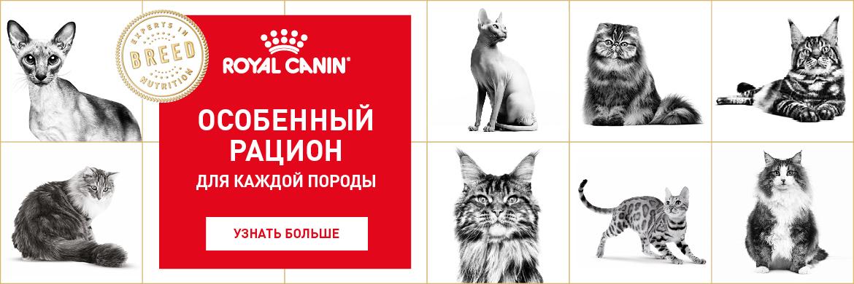 Royal Canin Кошки Акция с 09.10.2017 *цена за товар указана с учетом данной акции, те вы получаете 25% бесплатно.