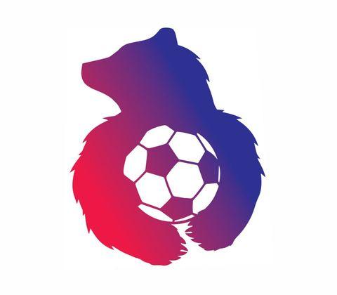 ЖФК Медведь
