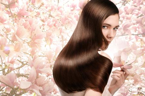 Что выбрать - профессиональный уход за волосами или обычный?