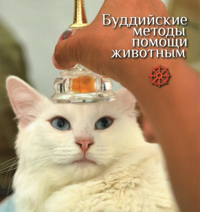 Буддийские методы помощи животным