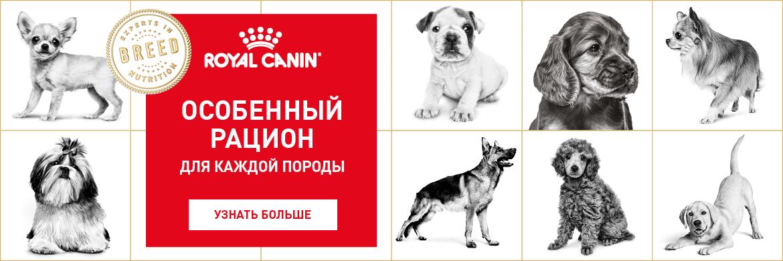 Royal Canin Собаки Акция с 09.10.2017 *цена за товар указана с учетом данной акции, те вы получаете 25% бесплатно.
