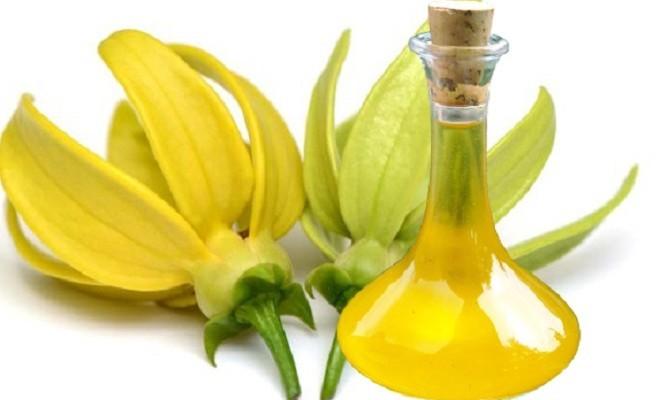 Эфирное масло кананги