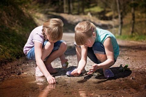 Почему дети в семье конфликтуют между собой и как им помочь?