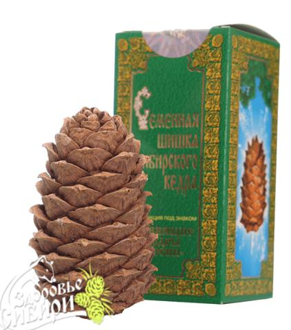 Подарок - кедровая шишка из родовых поместий Сибири