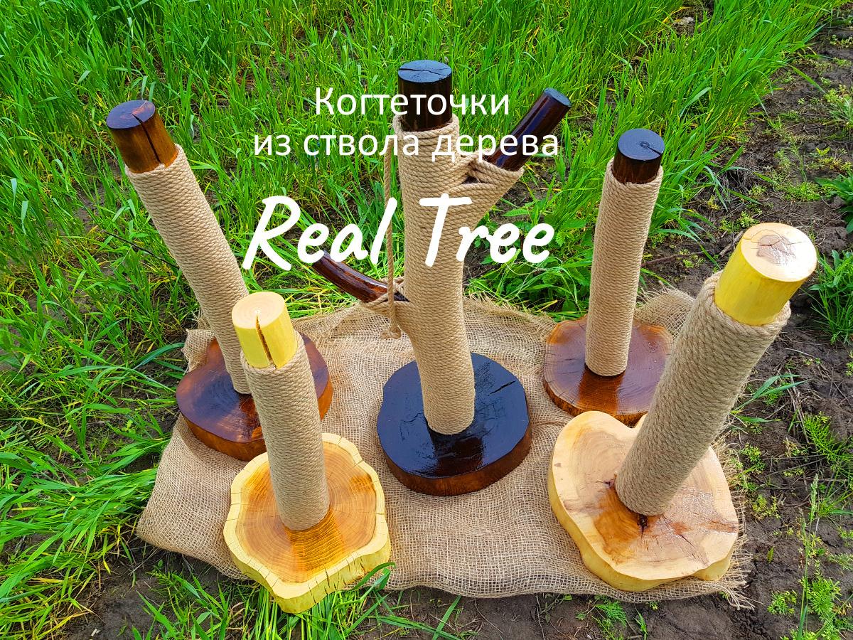 Новая коллекция когтеточек из ствола дерева