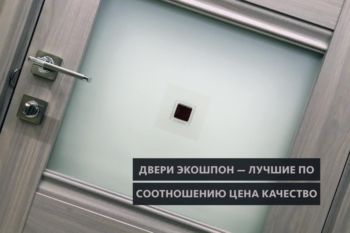 Двери экошпон — лучшее соотношение цена качество