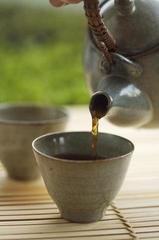 Как вырастить чай дома. Пошаговый рецепт