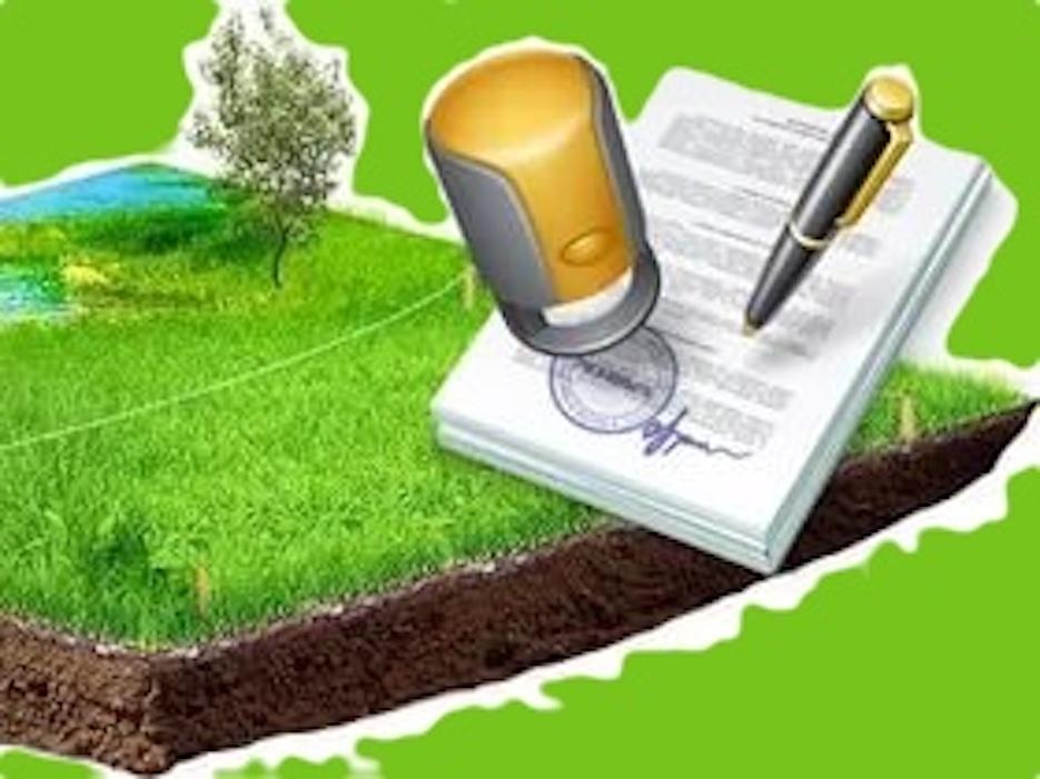 Земельный пай: как оформить и как использовать