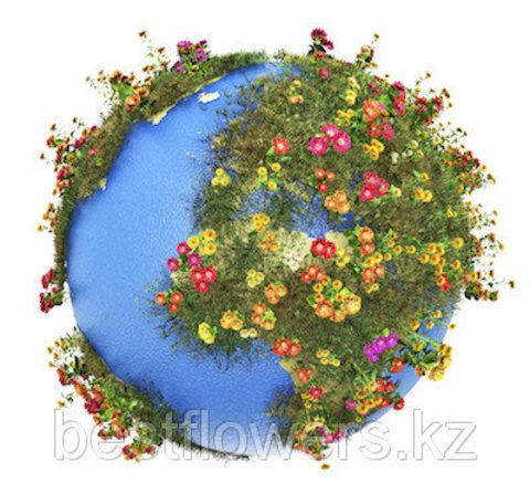 Мы доставляем цветы в любую точку мира