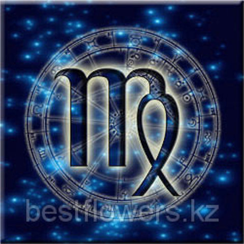 Дева – один из самых неоднозначных знаков Зодиака, цветы для девы