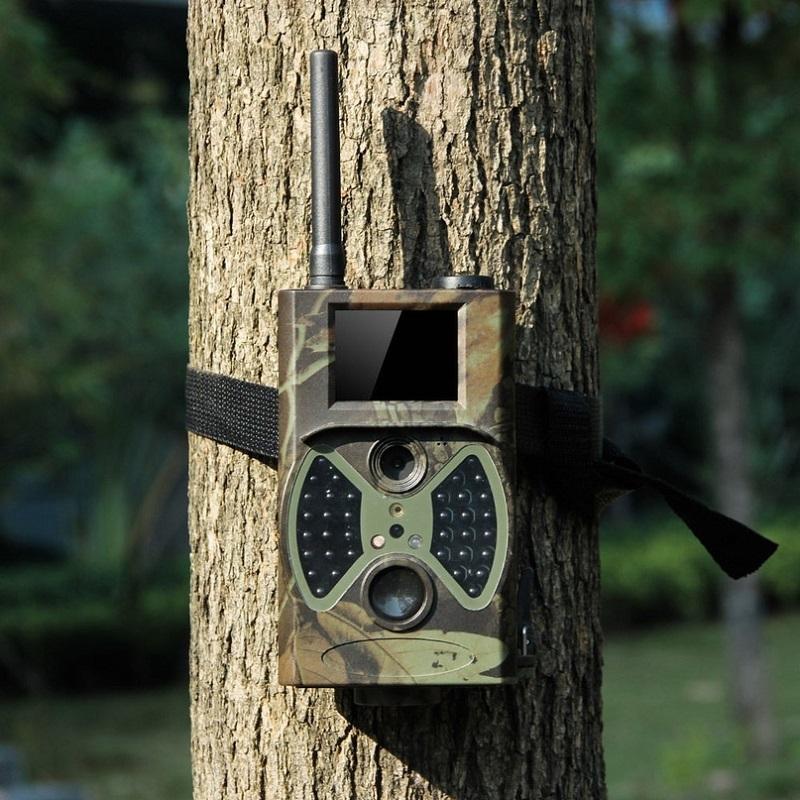 Что такое фотоловушка и для чего она нужна