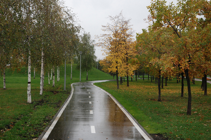 Станцию метро Медведково и Мытищи свяжет велодорожка