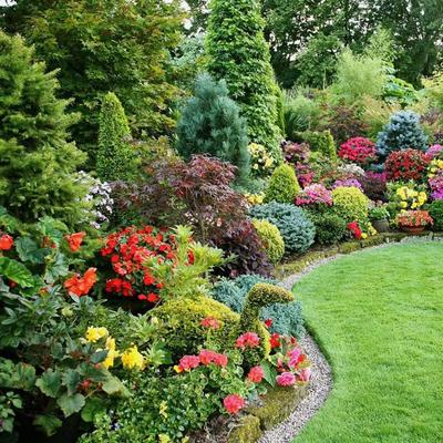 От всех болезней сад полезней