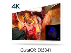 Корпорация EIZO анонсировала выпуск медицинского монитора с диагональю 58