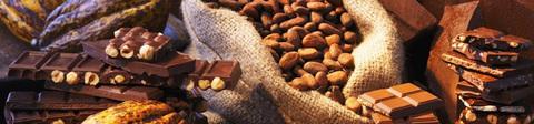 Так ли вреден шоколад, как его малюют?