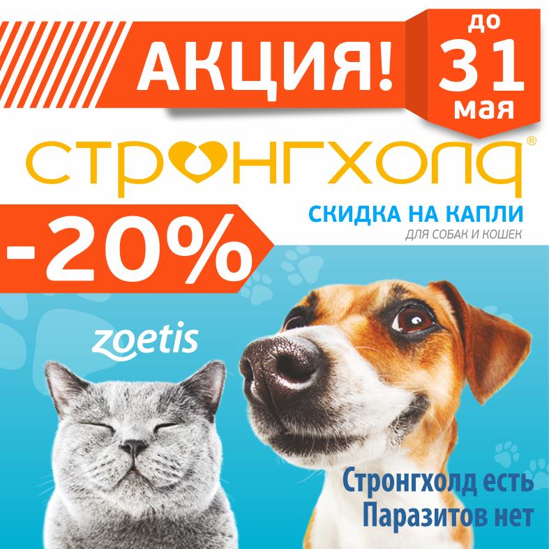 Акция СТРОНГХОЛД