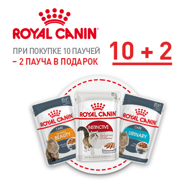 Новая акция: паучи Royal Canin в подарок