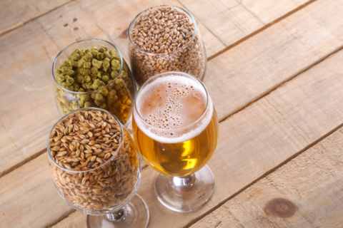 ТОП 12 сортов пива (экзотическое пиво)