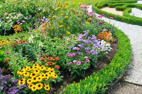 Клумба непрерывного цветения (миксбордер)
