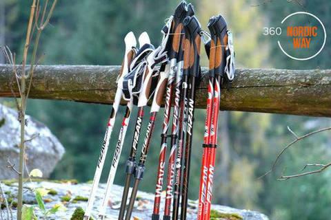 Правильные скандинавские палки. Как выбрать.