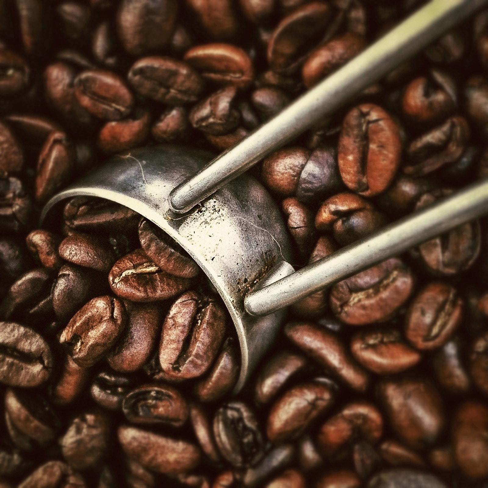 Кофе Лювак - в чем его особенность?