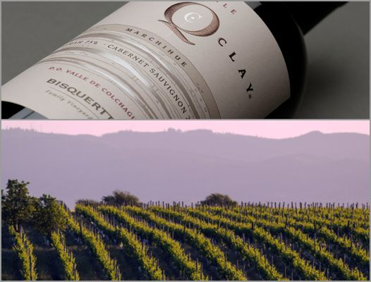 Вино недели с 18 декабря - Bisquertt Q Clay Marchihue