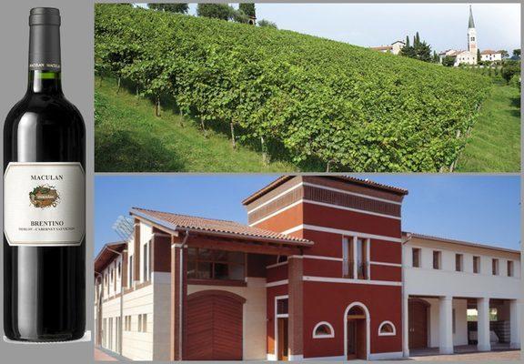 Вино недели с 6 ноября - Maculan Brentino
