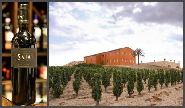 Вино недели с 30 октября - Feudo Maccari Saia