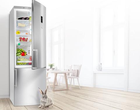 Современный холодильник: цена - качество