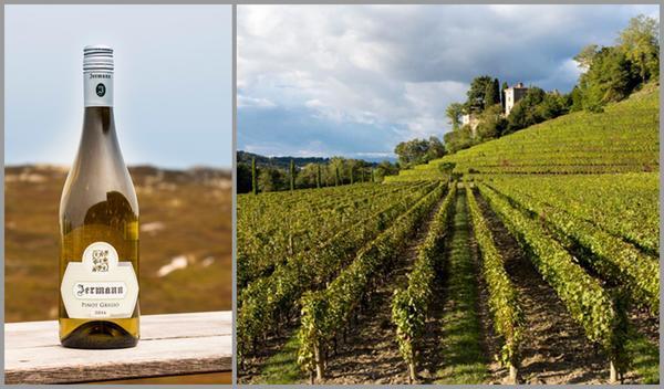 Вино недели c 17 июля - Jermann Pinot Grigio