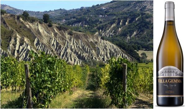 Вино недели с 26 июня - Masciarelli Villa Gemma Bianco