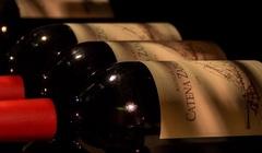 Catena Zapata начинает продажу вин через Place de Bordeaux