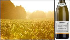 Kumeu River выпустило первое вино с нового виноградника в Hawkes Bay