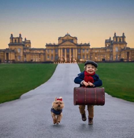 2-летний мальчик и его собака стали звездами соцсетей