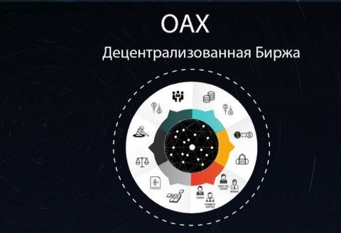 Обзор монеты OpenAnx(OAX)