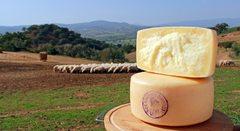 Итальянский сыр Грана Падано