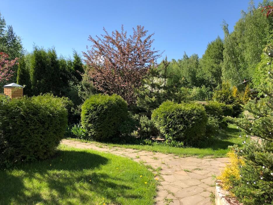 Оформление сада своими руками