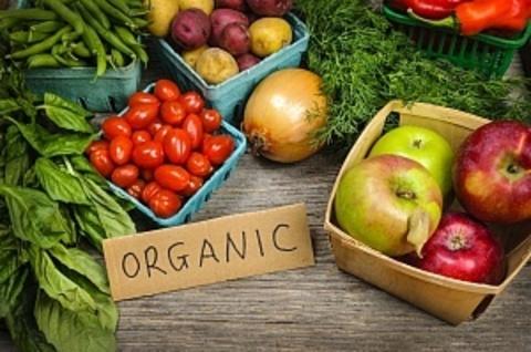 Органические продукты питания: что это такое? Основные критерии экологически чистой продукции