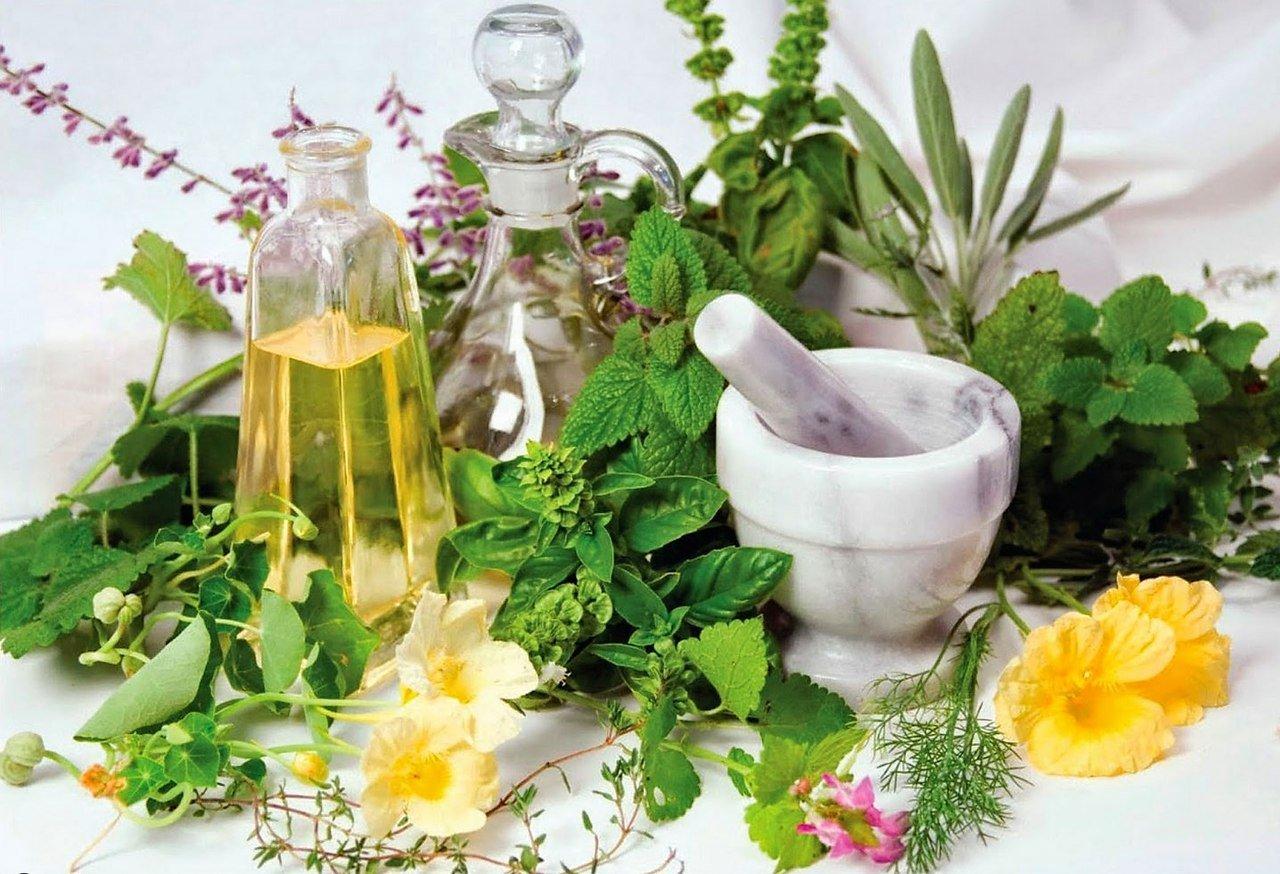 Список из 10 мощнейших растительных компонентов для ИМУНИТЕТА!