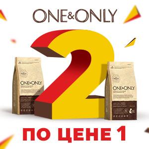 One & Only - усиленный запас! / ЗАВЕРШЕНА