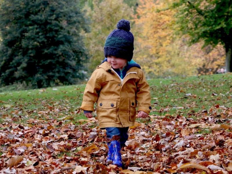 Украшаем участок осенью в детском саду