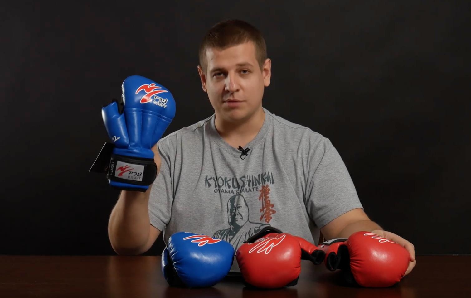 Сравнение перчаток для рукопашного боя фирмы Рэй-спорт