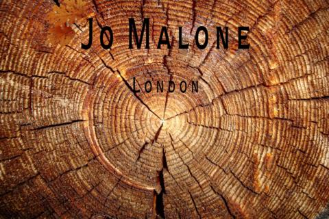 Английский дуб от Джо Малон: «лесной» дуэт уже в продаже!