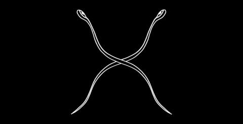 Филип Маршалл, The Tapeworm