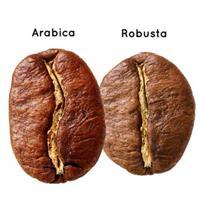 Арабика против Робусты! Что лучше?