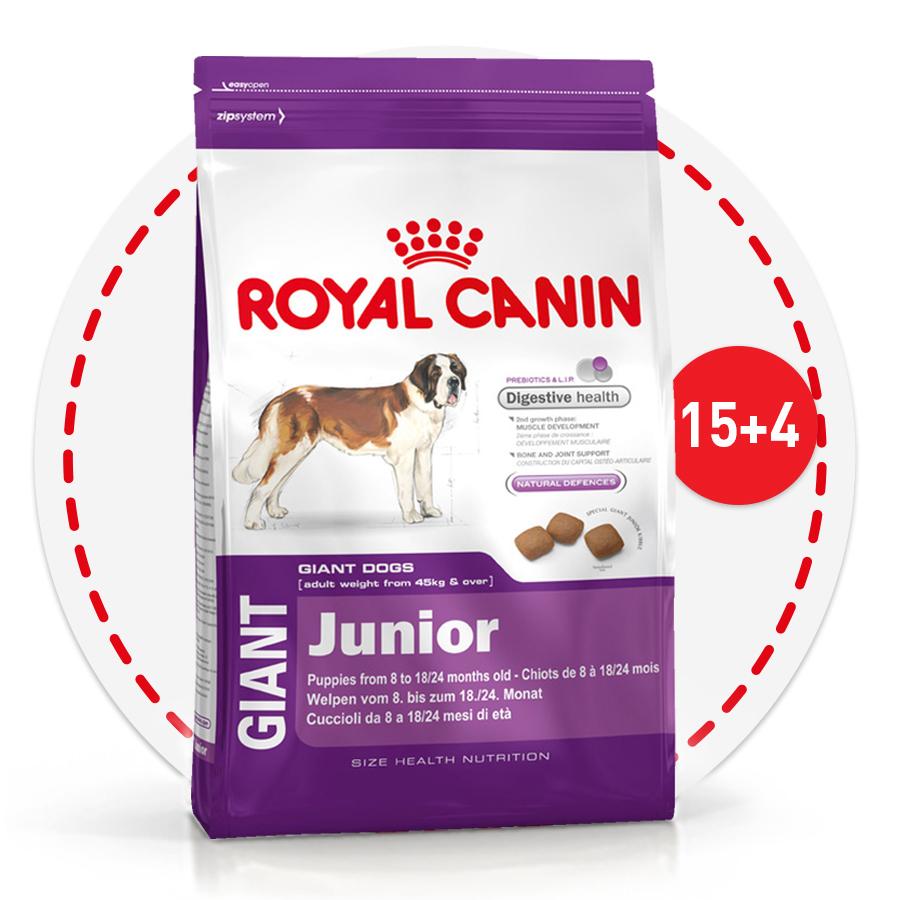 4 кг в подарок при покупке корма для щенков Royal Canin